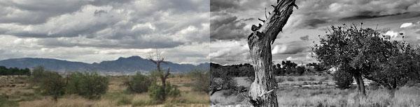 Técnica y tutoriales de fotografía