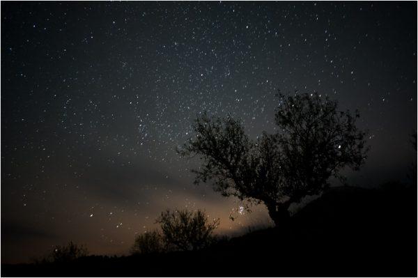 Cielo estrellado en la Sierra de María.